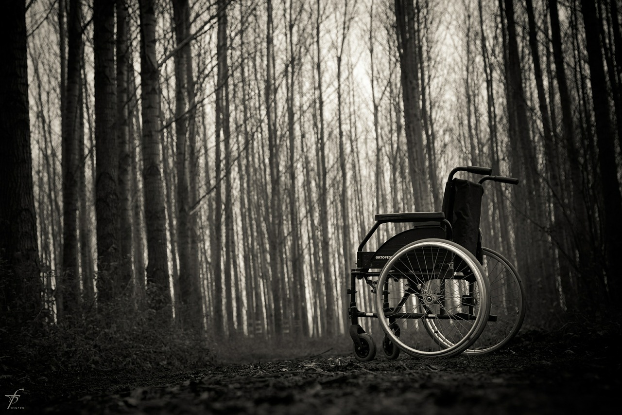 wheelchair-567811_1280